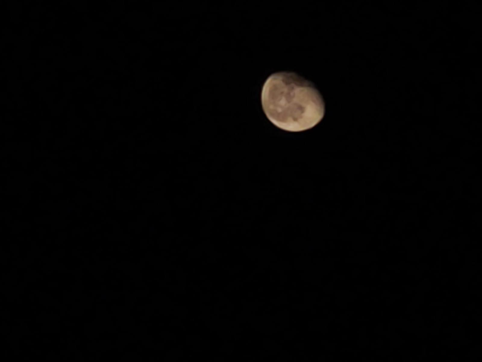 Mond-2